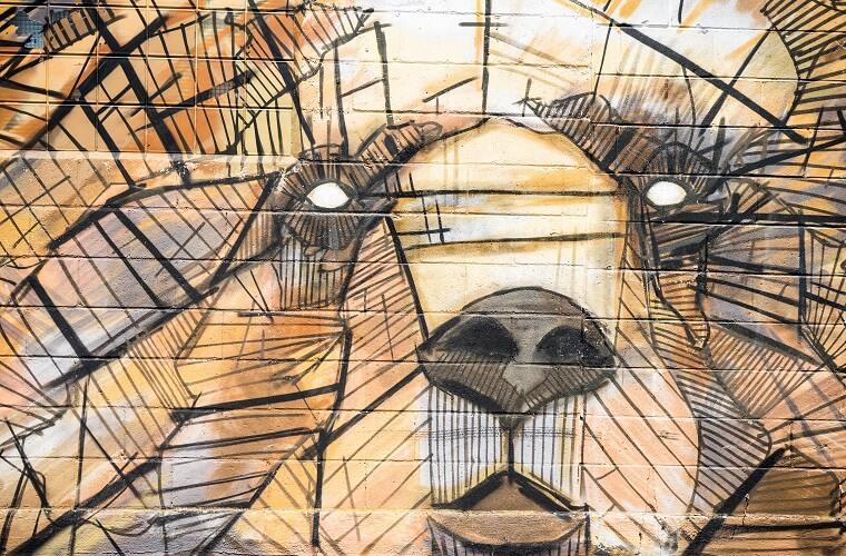 Voorbeeld graffiti bruine beer
